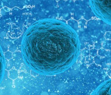 formation_experimentale_biologie_moleculaire